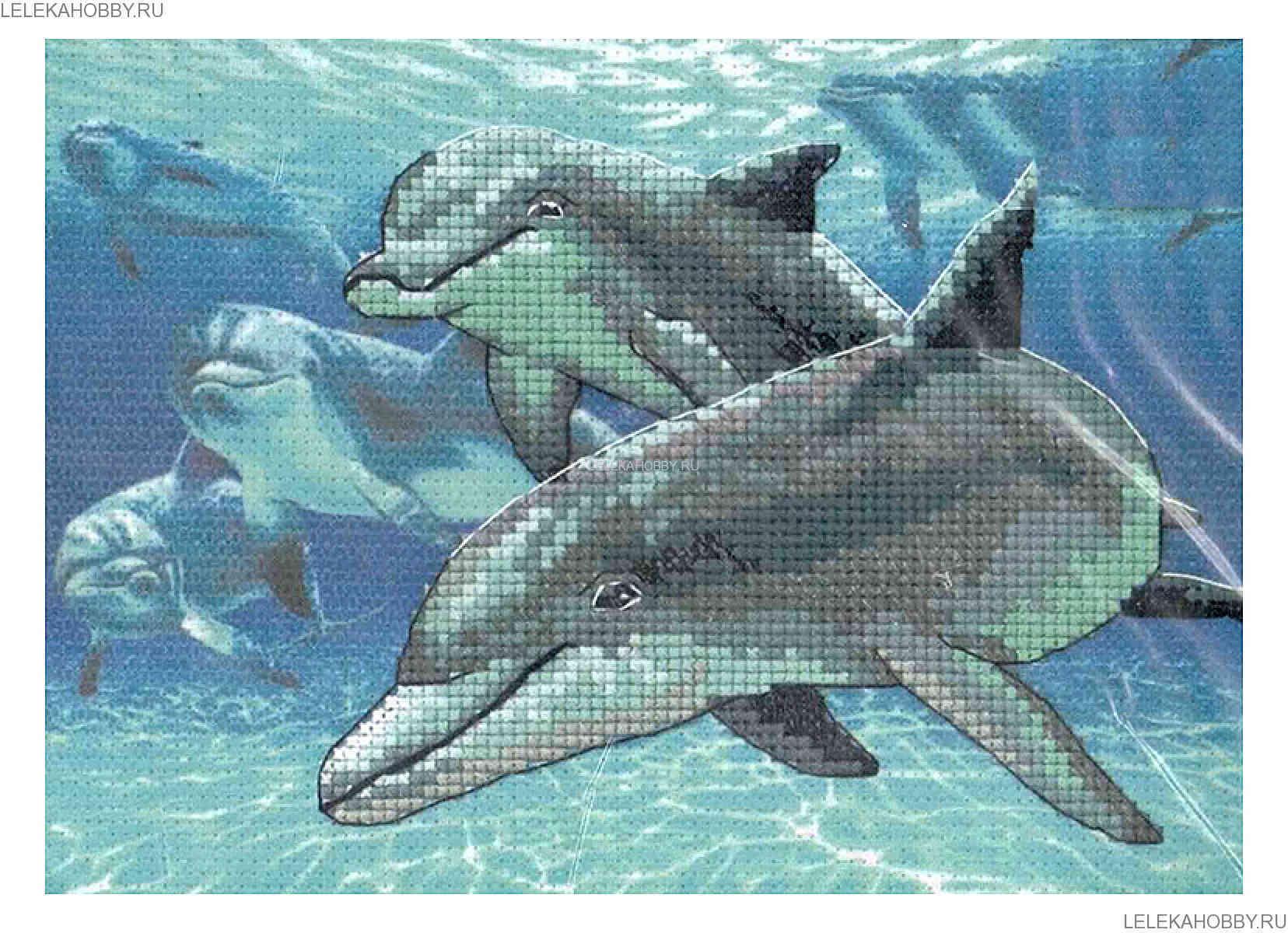 дельфины от дименшенс картинки провода затем