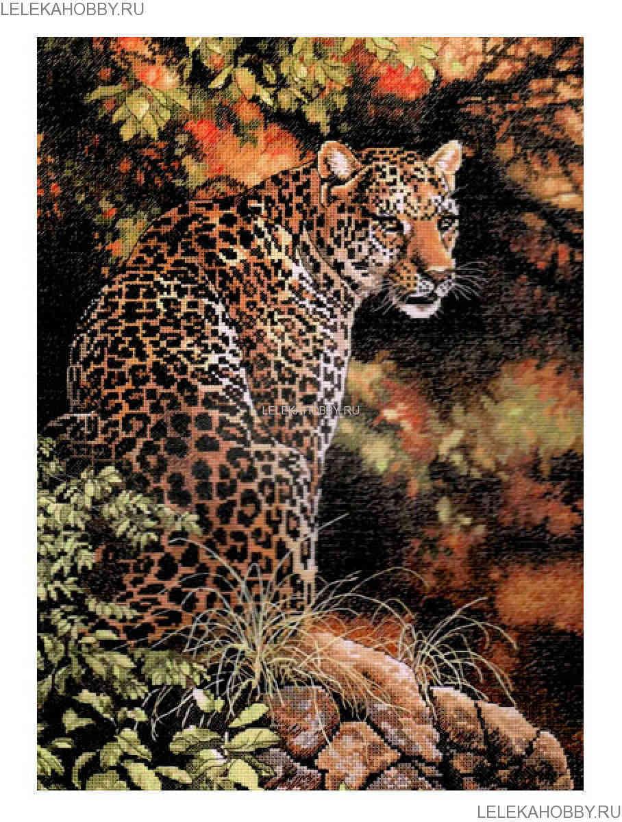 Набор для вышивания крестом DIMENSIONS Взгляд леопарда, 30 ...  Взгляд Леопарда