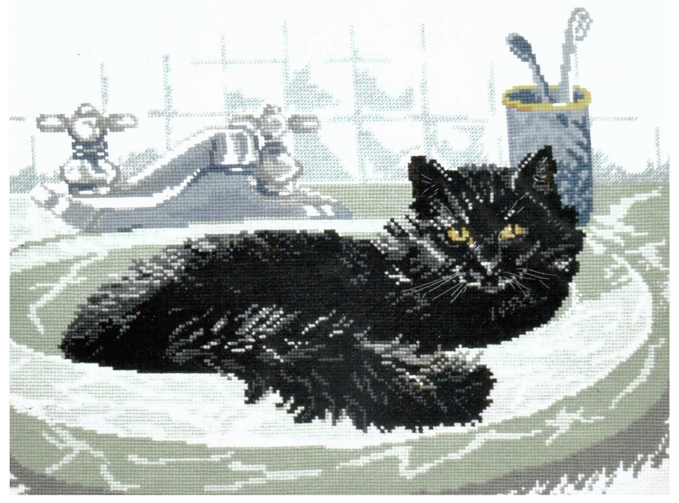 Коты на черном фоне схемы