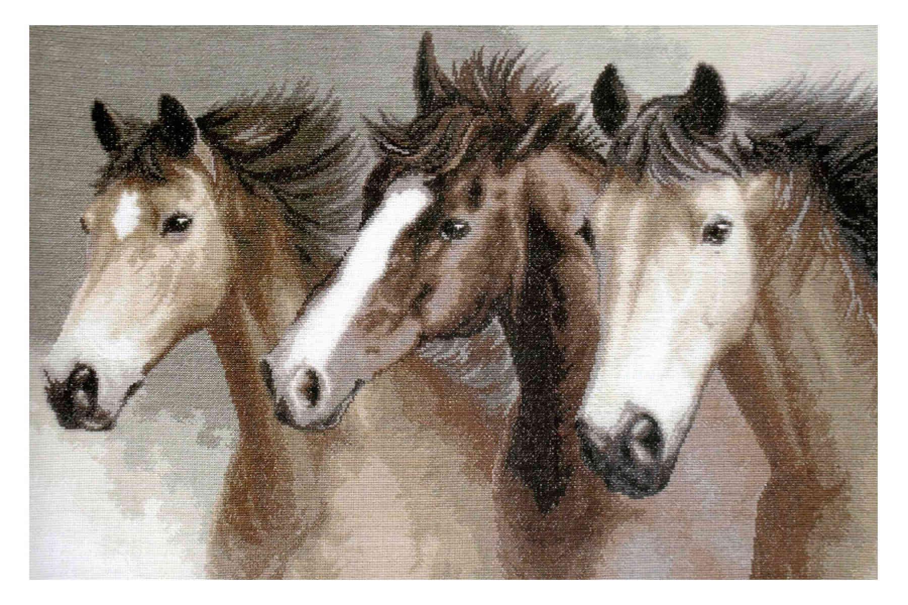 Вышивка крестом чаривна мить лошади