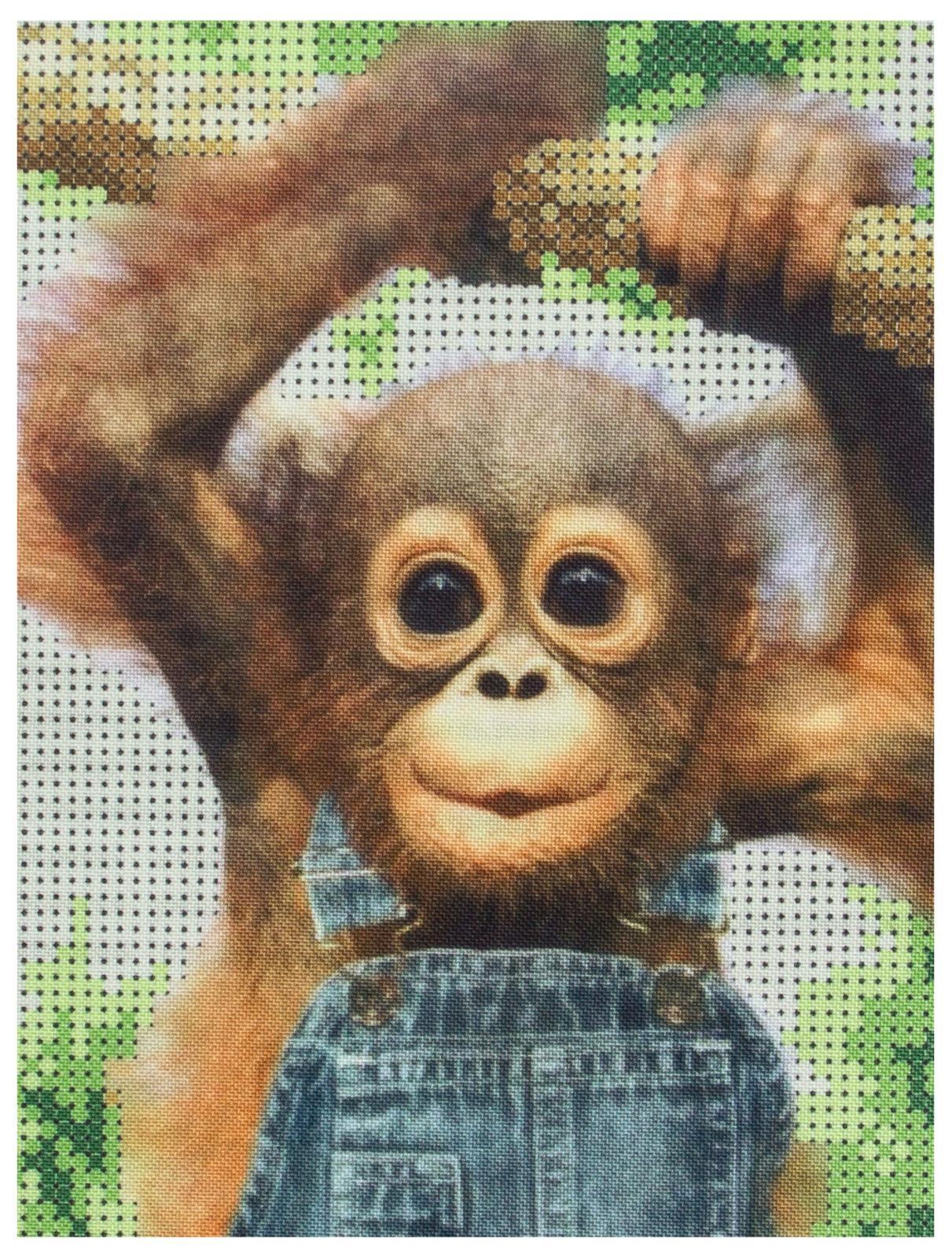 Поздравлениями новым, прикольные картинка с обезьяной