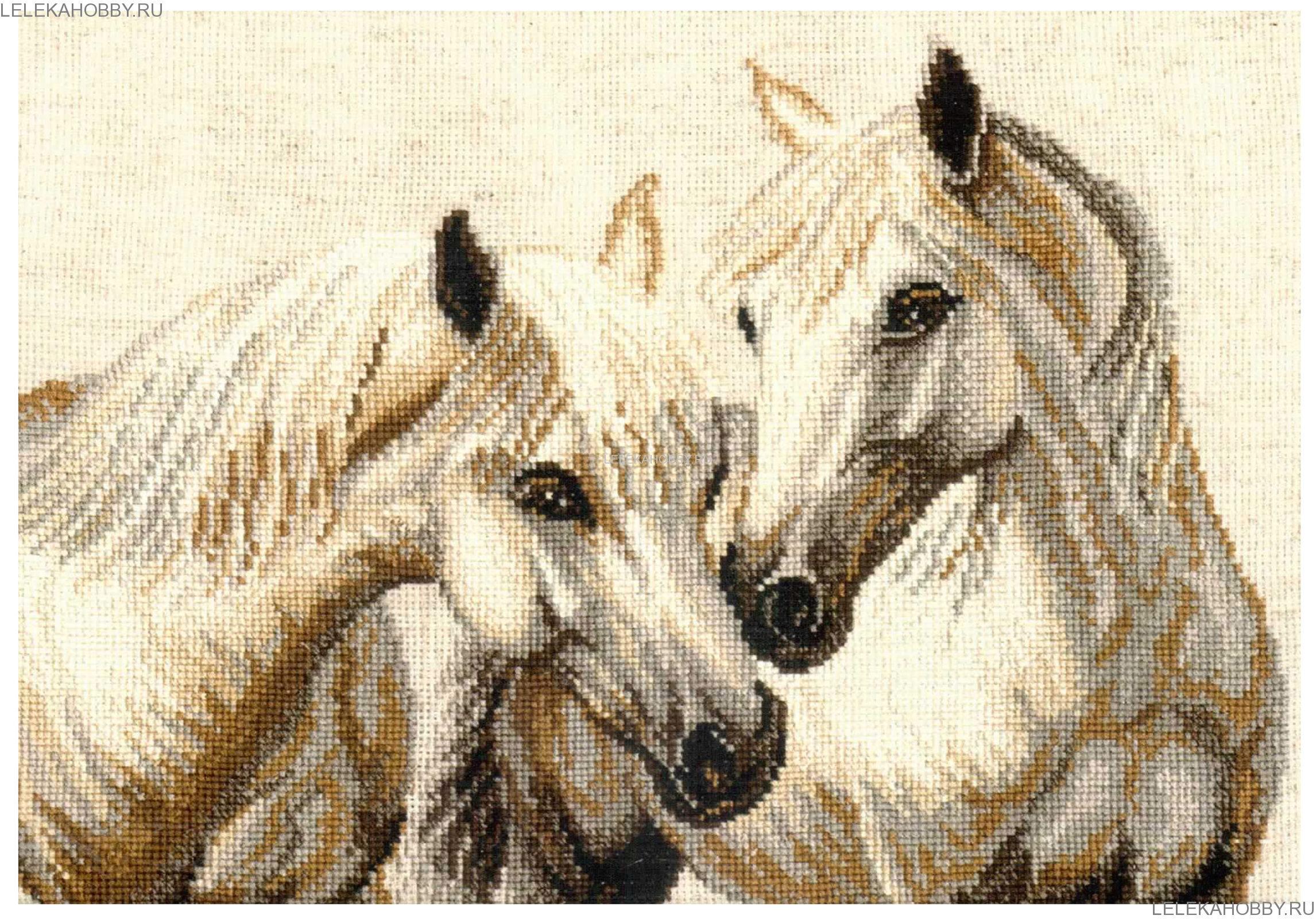 Наборы для вышивки кони