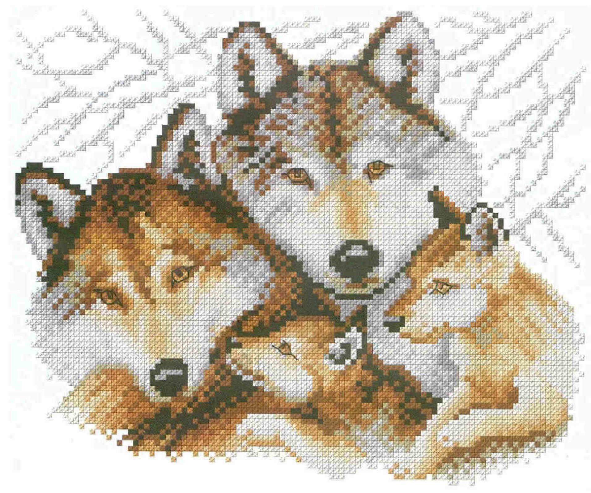 Искусница схемы волки
