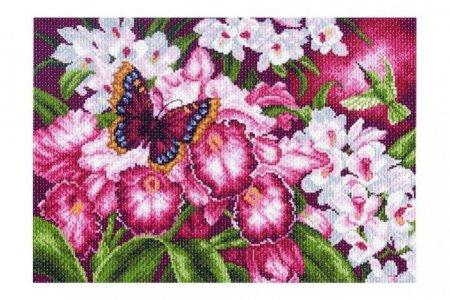 Рисунок для вышивки орхидеи 78