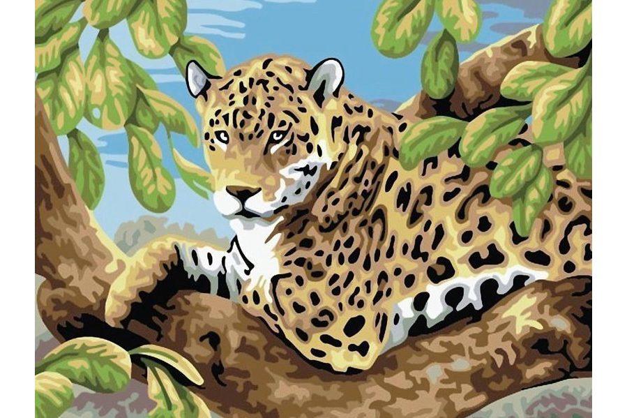 Раскраска по номерам БЕЛОСНЕЖКА Леопард в лесу 240-CE, 30 ...