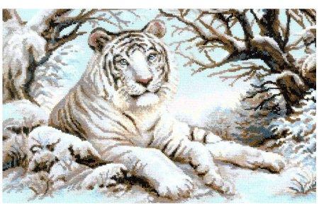 Бенгальский тигр, 60*40см