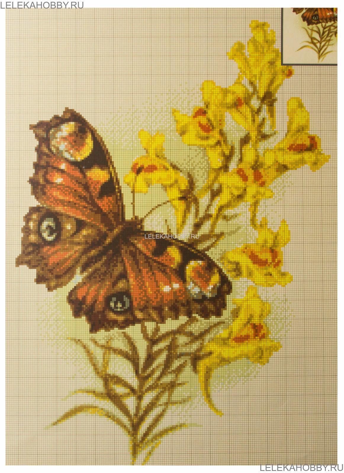 Схема вышивки бабочек шоколадниц