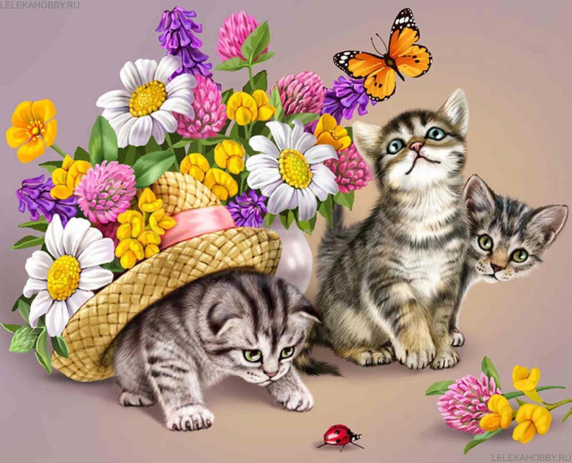 листы картинки на кошачью тему такой сигнал, любимый