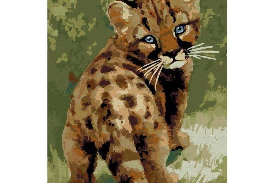 Раскраска по номерам БЕЛОСНЕЖКА Детеныш леопарда 008-CE ...
